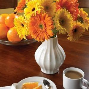 Harvard: Flowers Boost Morning Moods