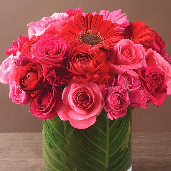 aboutflowers_valentine_rosesredpink600