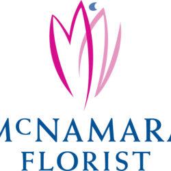 MNF Logo V Clr 10.15