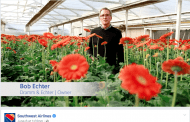 California Flower Farm Takes Staring Role in Southwest Ads
