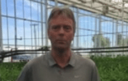 Martin Meskers Oregon Flowers - Message to SAF Grower Members