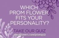 SAF PR Program Drives Teens to Prom Flowers