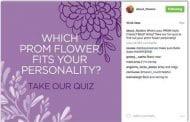 SAF Prom Quiz Generates 2 Million Impressions