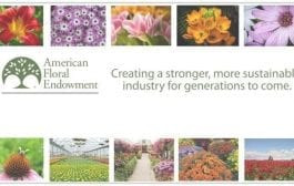New AFE Videos Tout Floriculture Successes