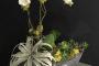 Michigan Florist Finds Gold in 'Trolls' Revival