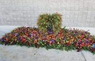 Florists Create Memorial for Las Vegas Shooting Victims