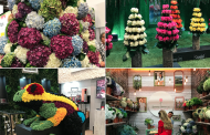 New National Brand, Pest Control Info Among Highlights of Proflora 2017