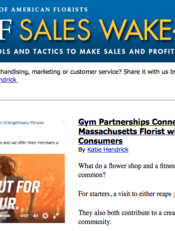 screenshot of the Sales WakeUP newsletter
