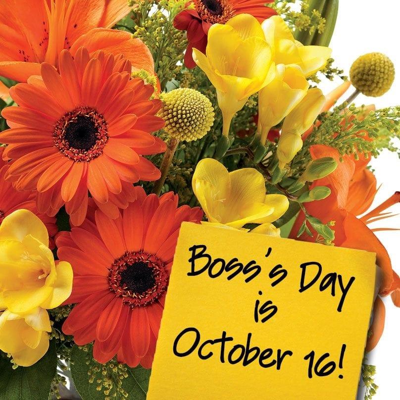 BossestDay-404-Oct16