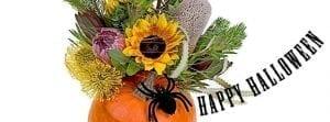 Halloween_happy_FB_851x315