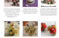 Informative Website Woos Brides