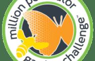 SAF, AFE Join in 'Million Pollinator Garden Challenge'