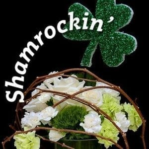 Leprechauns Love Flowers and Facebook Graphics