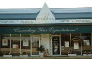 Conforti Sells Beneva Flowers