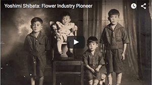 Yoshimi Shibata's floral industry and family life are documented in a brief video, first screened at the CalFlowers Fun 'n Sun conference in Monterey, California, when he was awarded the CalFlowers 2015 Distinguished Service Award.