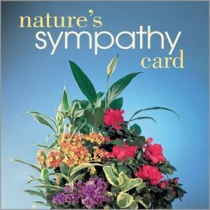 Nature's sympathy card. blue background and an mixed color arrangement displayed