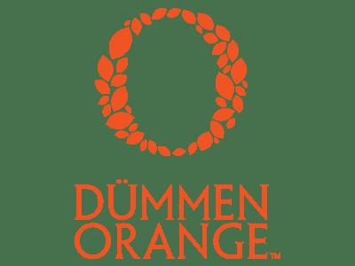 Sponsor Dummen-Orange