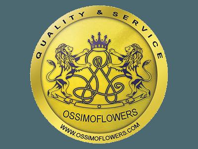 Sponsor OssimioFlowers