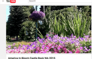 America in Bloom Marks Anniversary with Fundraising Push
