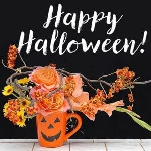 The Society of American Florists provides members with a library of Halloween graphics sized for website banner ads and social media.