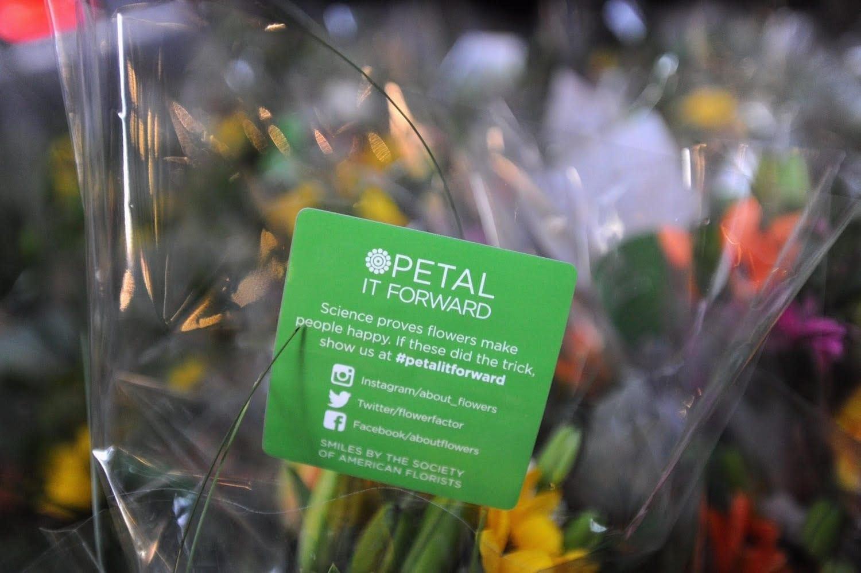 Petals It Forward: October 19