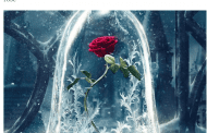 AFE Weighs in on 'Enchanted Rose' in 'Beauty and the Beast'