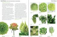 Varieties Tap into 'Greenery' Craze