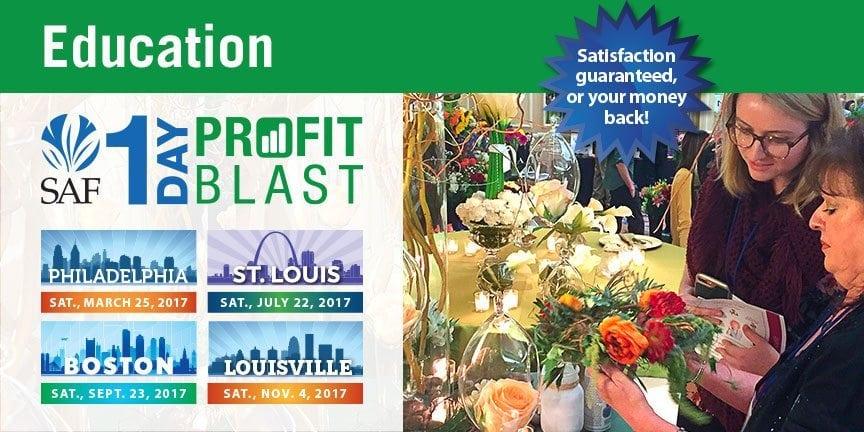 1-day profit blast