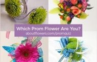 Attract Teen Shoppers with Prom Quiz Cheat Sheet