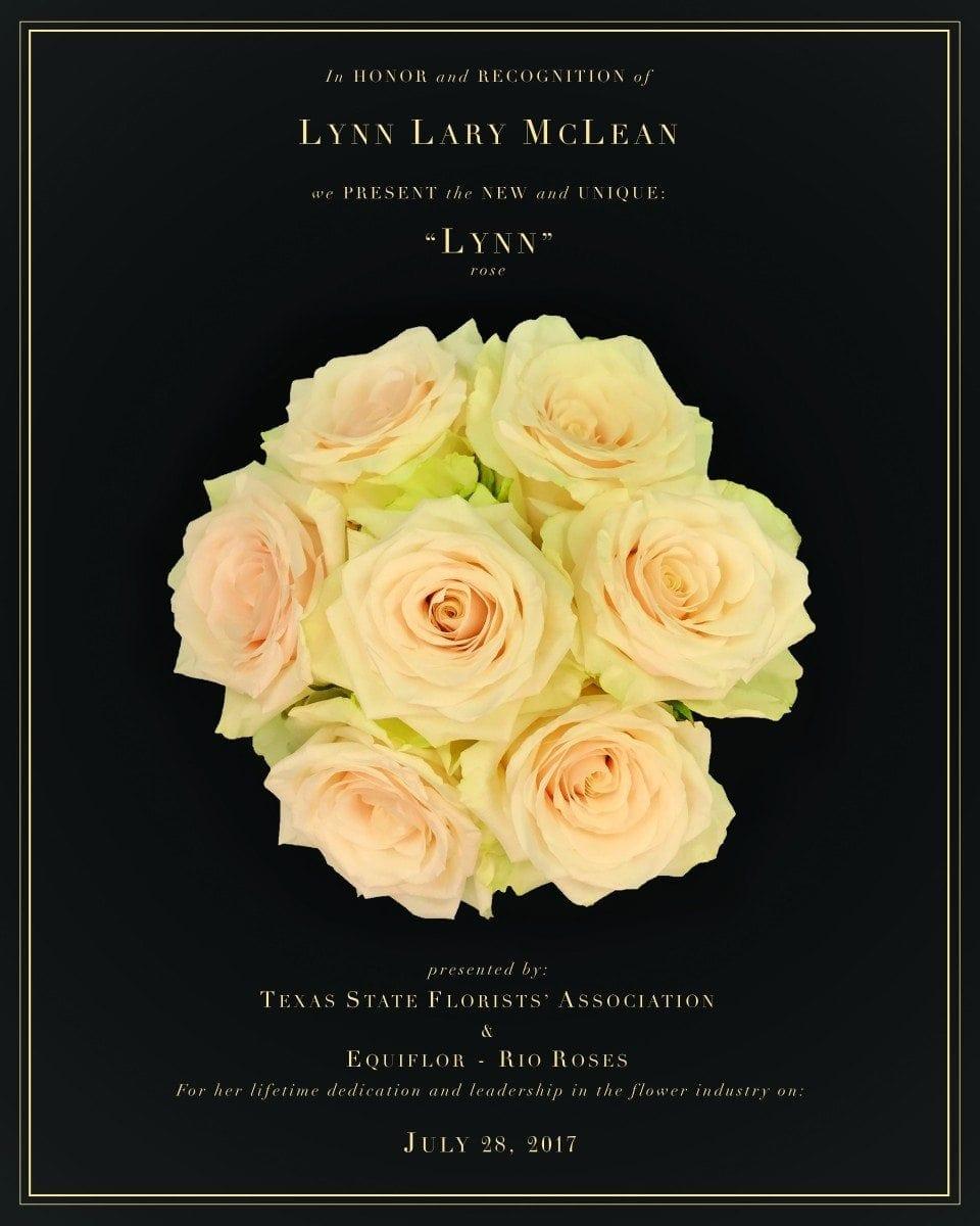 Rose Named For Beloved Floral Designer Safnow Org