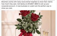 Pet Bereavement Designs Make Easy Sales for Texas Florist