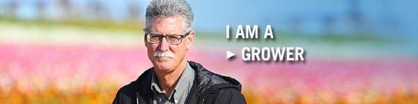 SAF-Member-grower