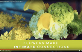 Use New Photos and Videos to Promote Flowers for Interior Décor
