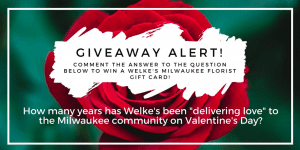 """On Monday, January 29, Welke's Milwaukee Florist gave a free gift card to the first person who could correctly answer the Facebook query, """"How many years has Welke's been 'delivering love' to the Milwaukee community for Valentine's Day?"""" (Answer: 117.)"""