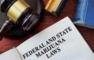 Feds Clamp Down On Marijuana