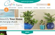 Costa Farms Acquires Green Leaf Nursery