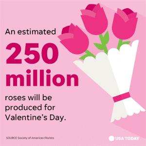 USAToday_Snapshot_Vday2018_Roses