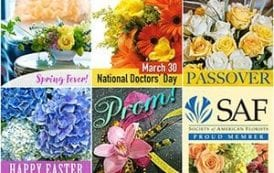 SAF Graphics Celebrate Spring Flowers