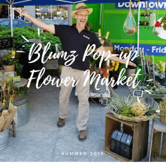 Robbin Yelverton, AAF, AIFD, PFCI, co-owner of Blumz…by JR Designs is excited to introduce his brand to urban dwellers during a new Tuesday market in Detroit's Capital Park.