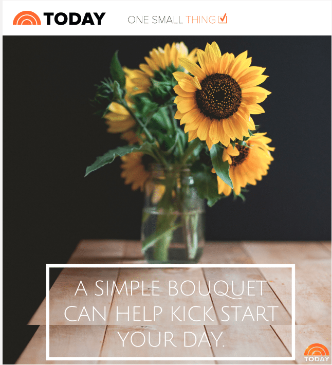 'Today Show' Tells Fans: 'A Simple Bouquet Can Help Kick Start Your Day'