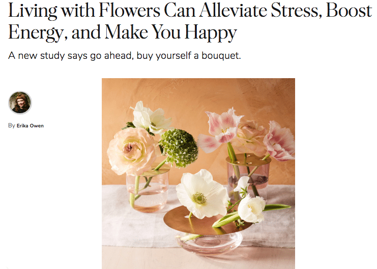The floral industry's ability to provide a research-backed solution to people in search of stress solutions creates the perfect public relations opportunity — one that SAF has already seized upon, said Jennifer Sparks, SAF's vice president of marketing. One high-profile media hit that came about quickly? MarthaStewart.com.