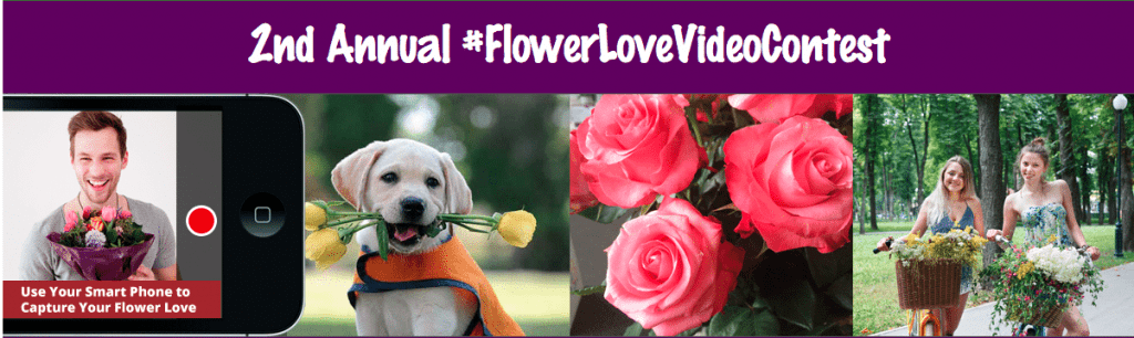 FMRF and AFE Launch Second Annual #FlowerLoveVideoContest