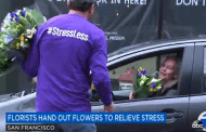 Major Media Coverage Touts Flowers' Stress-Busting Powers