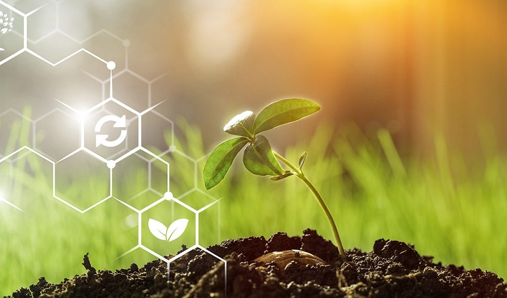 Executive Order Builds Momentum for Streamlined Biotech Regulations