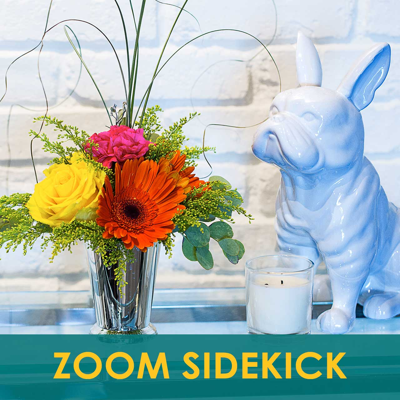 Zoom SideKick